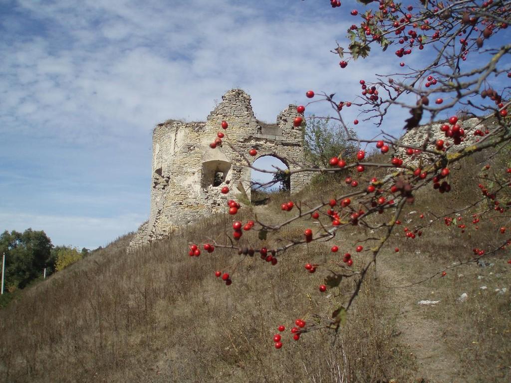 Південно-східна вежа замку, Ворота замку