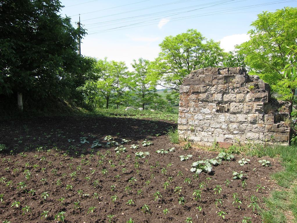 Залишки оборонного муру біля башти Пуласького