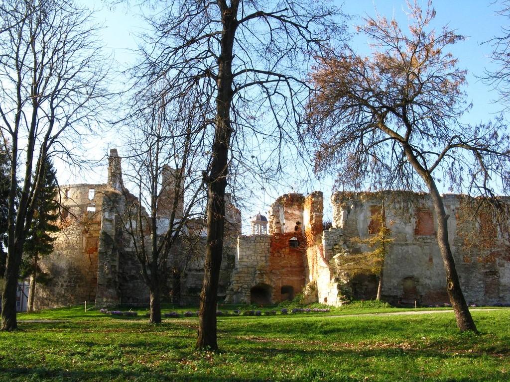 Південна стіна замку. Вигляд з парку.