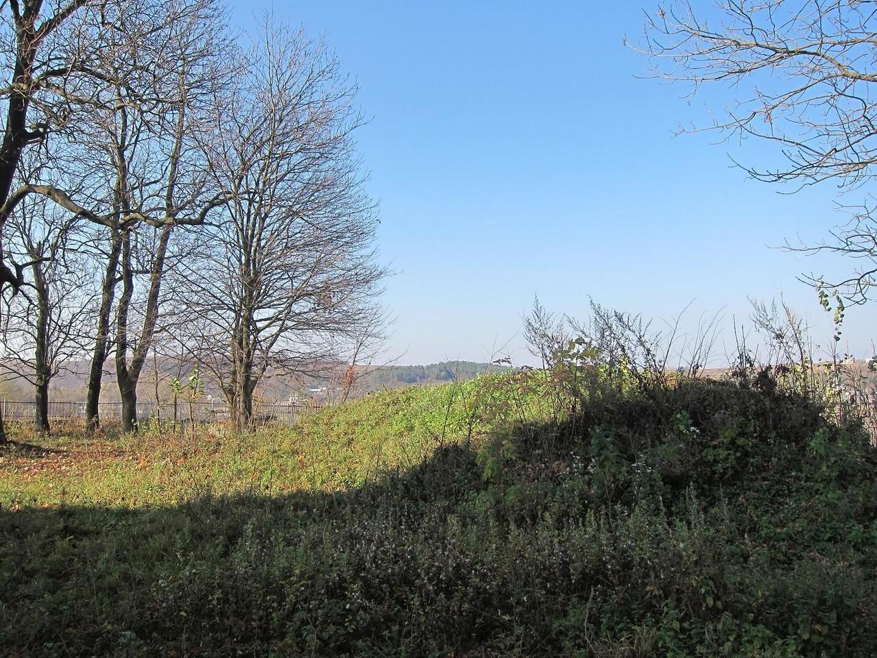 Залишки пивниць замку-палайу.