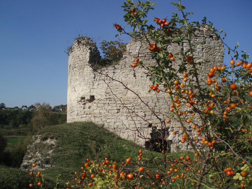 Південна вежа замку з дитинця