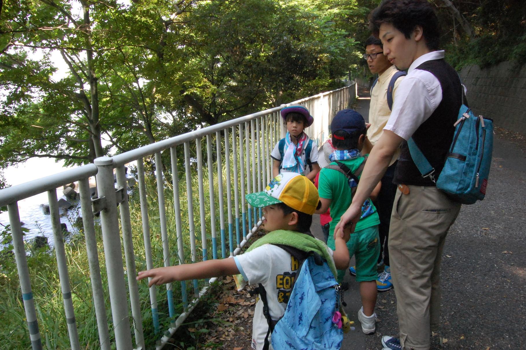 見学・観察 史跡の見学や動植物の観察をします