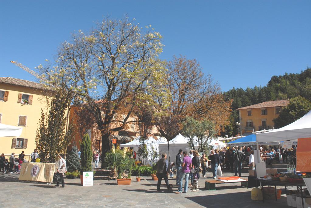 2010 - 24. - 28.09. - Fiera San Michele - Ausflug nach Modena