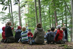 Lernort Natur: Schüler im Wald