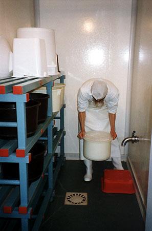 Fromage saint-nicolas, fromagerie la dalmerie