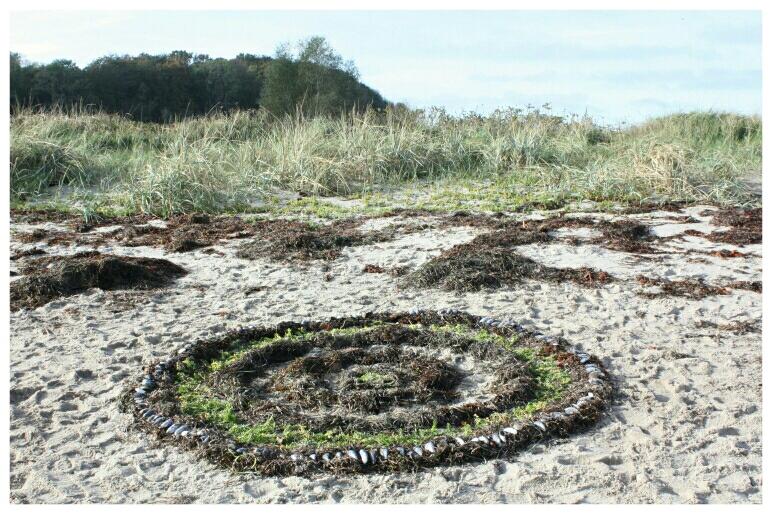Ostseestrand mit gestalteter Form aus braunem sowie grünem Seegras mit Miesmuscheln darauf gelegt es erinnert an Kreise wie wenn Wassertropfen auf Wasser fällt