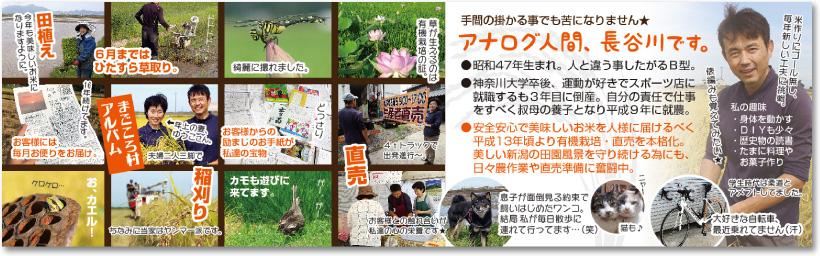 稲作米農家さんの売れる二つ折り名刺【デザイン見本|中面】