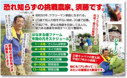 農家さんの売れる名刺【デザイン見本|ウラ面】
