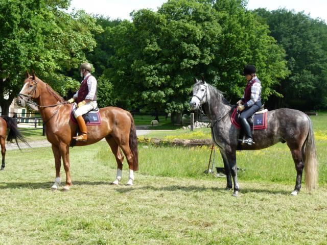 Wir satteln die Pferde