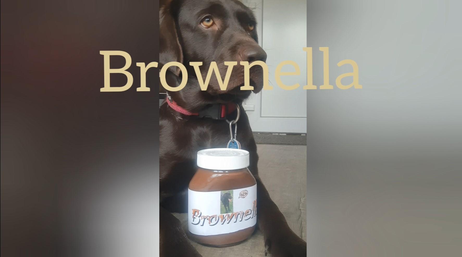 """""""Brownella - zu süß um wahr zu sein"""" - Ein Werbevideo entsteht"""
