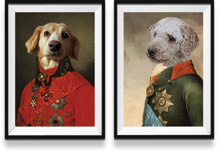 Colour portraits of dogs in military uniforms in frames on a white wall