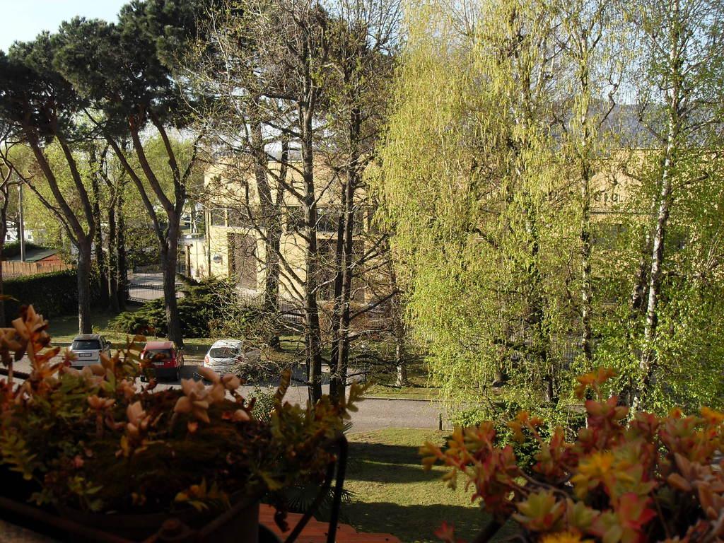 Giardino condominiale visto dalla terrazza - in primavera
