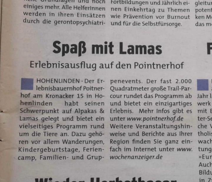 Zeitungsbericht Wochenanzeiger Zeitung Bericht Alpaka Lama Wanderungen Wandern Kindergeburtstag Ferien Feriencamp Erlebnis
