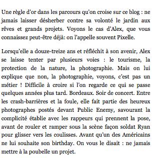 Article  DÉTOURAGES - Alex Pixelle - MEMOIRE VISUELLE