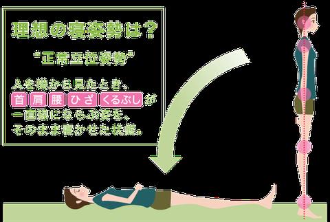 理想の寝姿勢