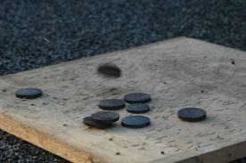 Palet sur planche : Un jeu d'équipe où il faut lancer les palets en fonte sur la planche. Un jeu convivial comme la pétanque    A partir de 10 ans