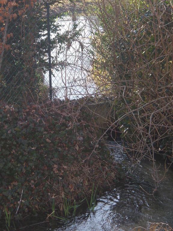 Ce ru comprend à l'amont du pont 3 dérivations qui se rejoignent juste avant le pont