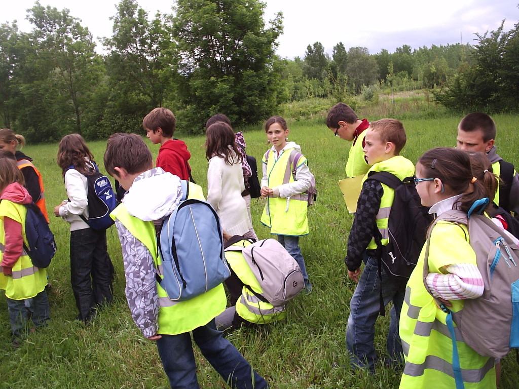 Les élèves de Vallant proche de leur étang