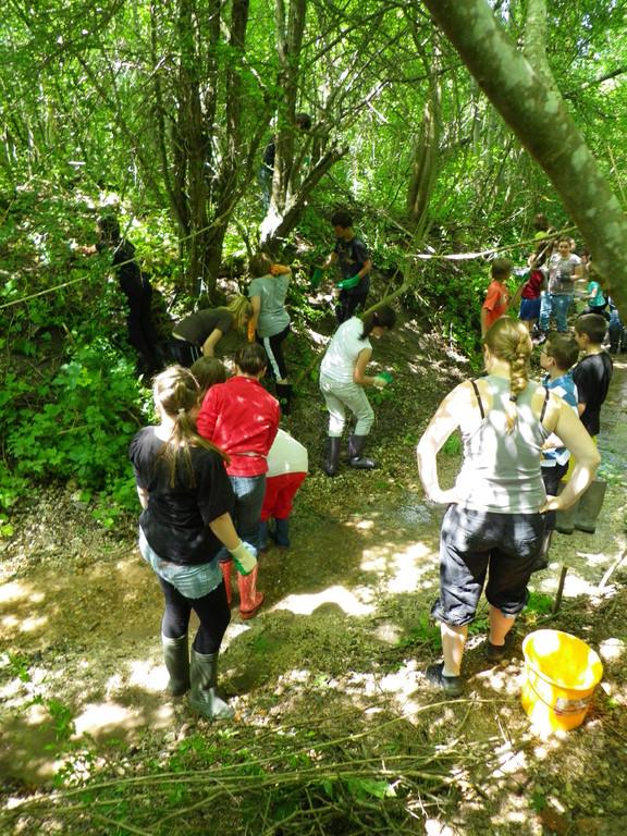 travaux avec les élèves pour faire des protections de berges