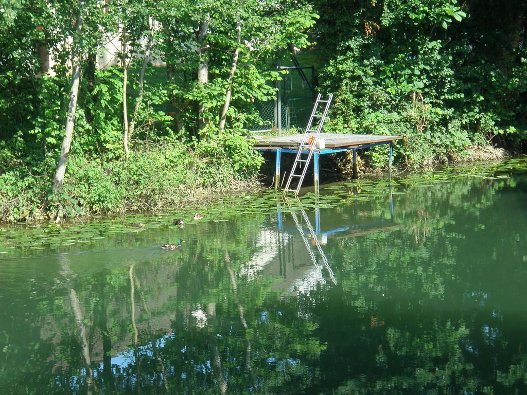 Seine ponton de pêche avenue Auguste Terrenoire à Saint Julien
