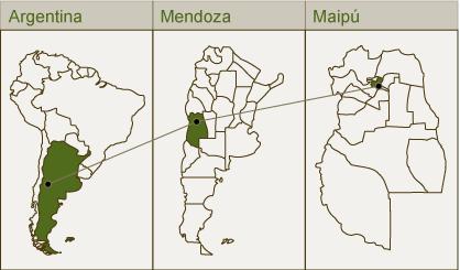 Argentinien, Mendoza, Maipu