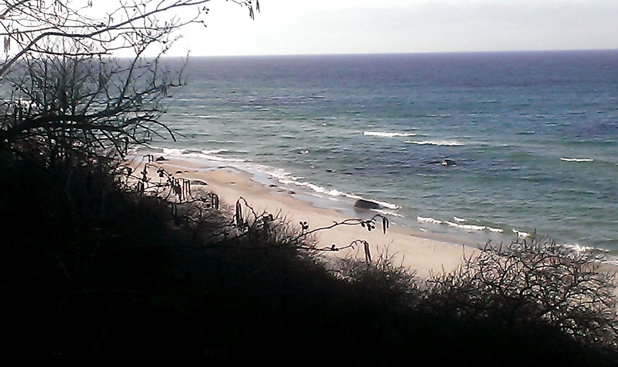 Strand am Kap Arkona