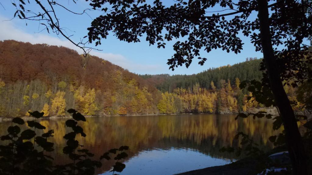 Stausee im Harz