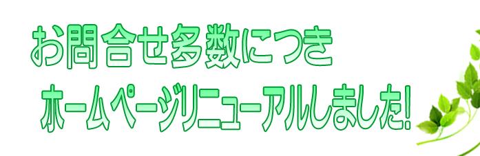 はじめてのレズホームページリニューアル!