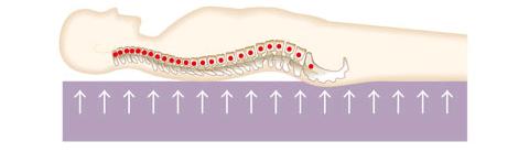 敷寝具が硬すぎる場合の説明画像 背骨と腰が圧迫されている