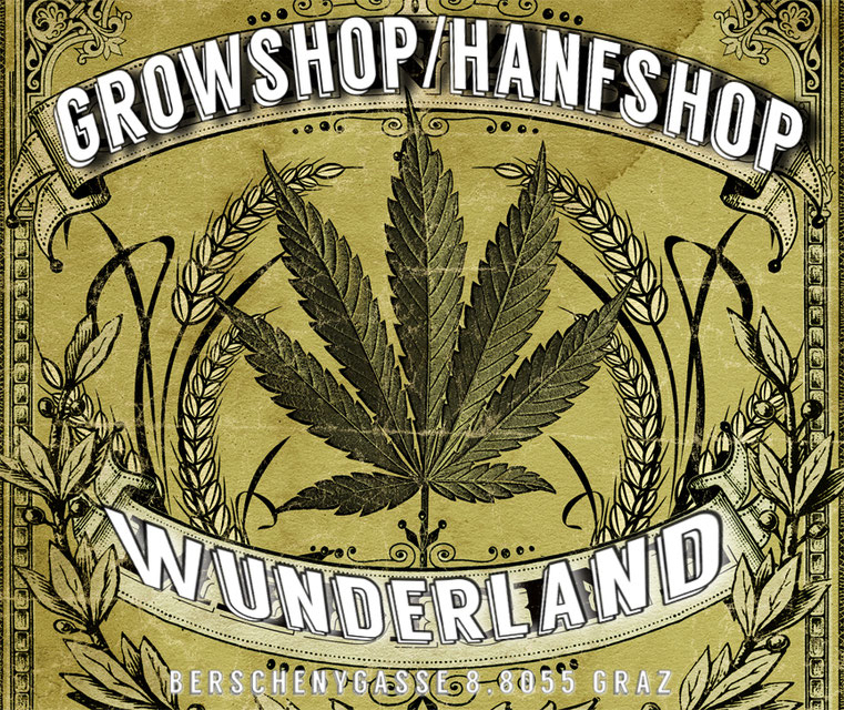 Wunderland Growshop Graz - Österreich - Hanfstecklinge und Hanfpflanzen / Trgovina za Konoplja Rastline i klone u Graz - Konoplja shop Avstrija - cannabis clones austria - cannabis cuttings austria