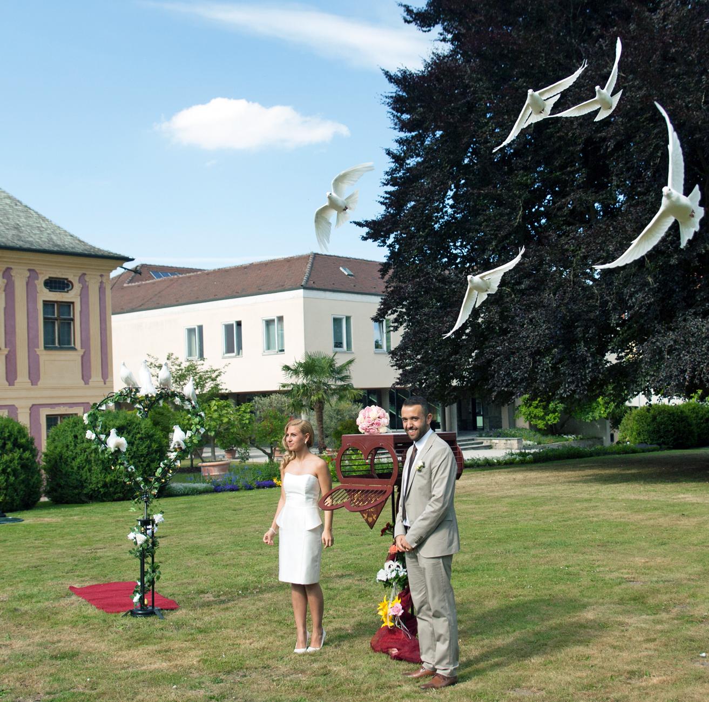 die weißen Tauben kreisen um das Brautpaar