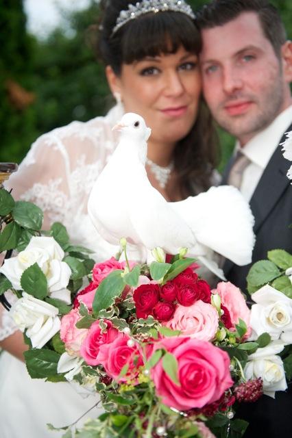 Die weiße Taube Lovely sitzt gerne auf dem Brautstrauß