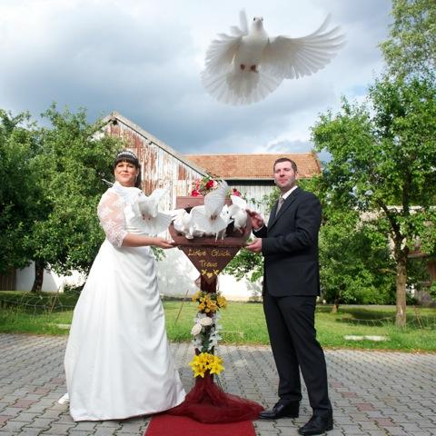 Start der weissen Tauben