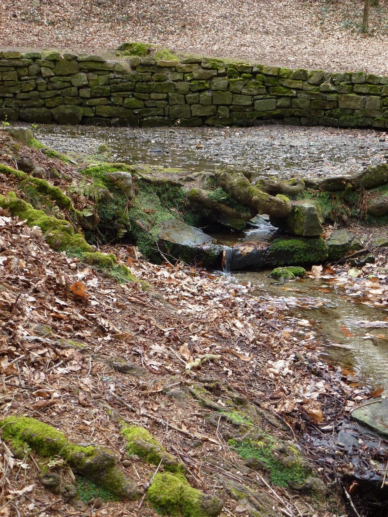Quelle in der Nähe von Loccum
