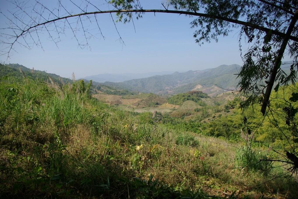 Blick ins Tal.