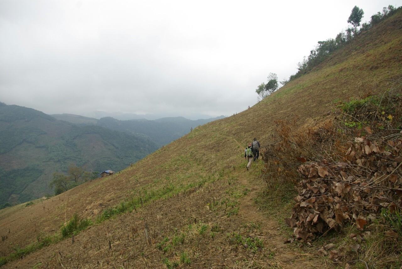 Einer der leergefegten Hügel.
