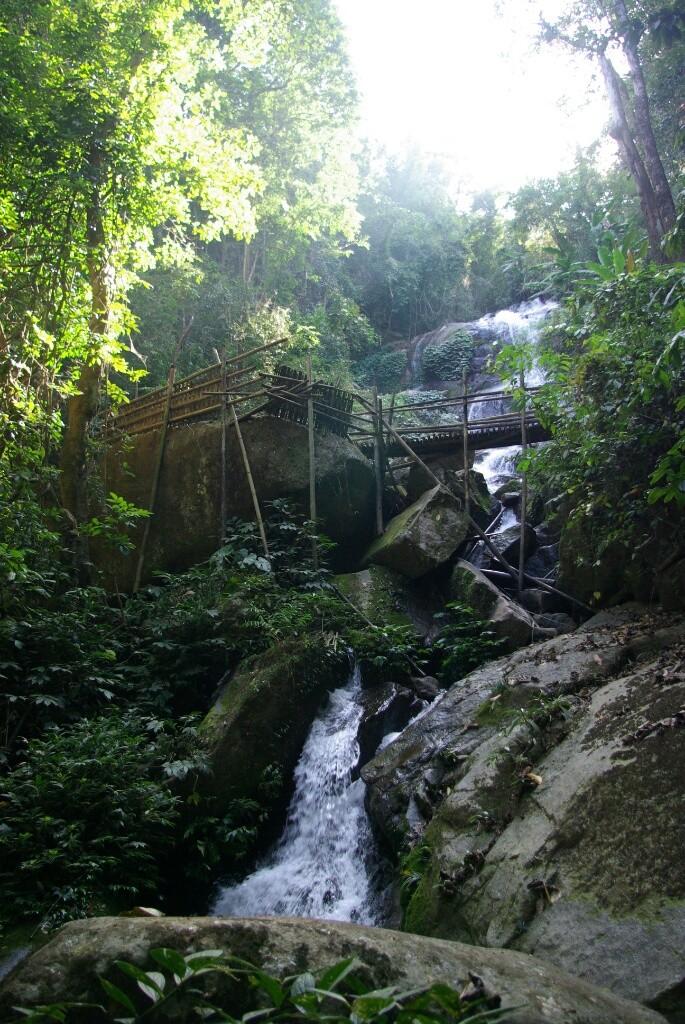 Ein Wasserfall im Dschungel.
