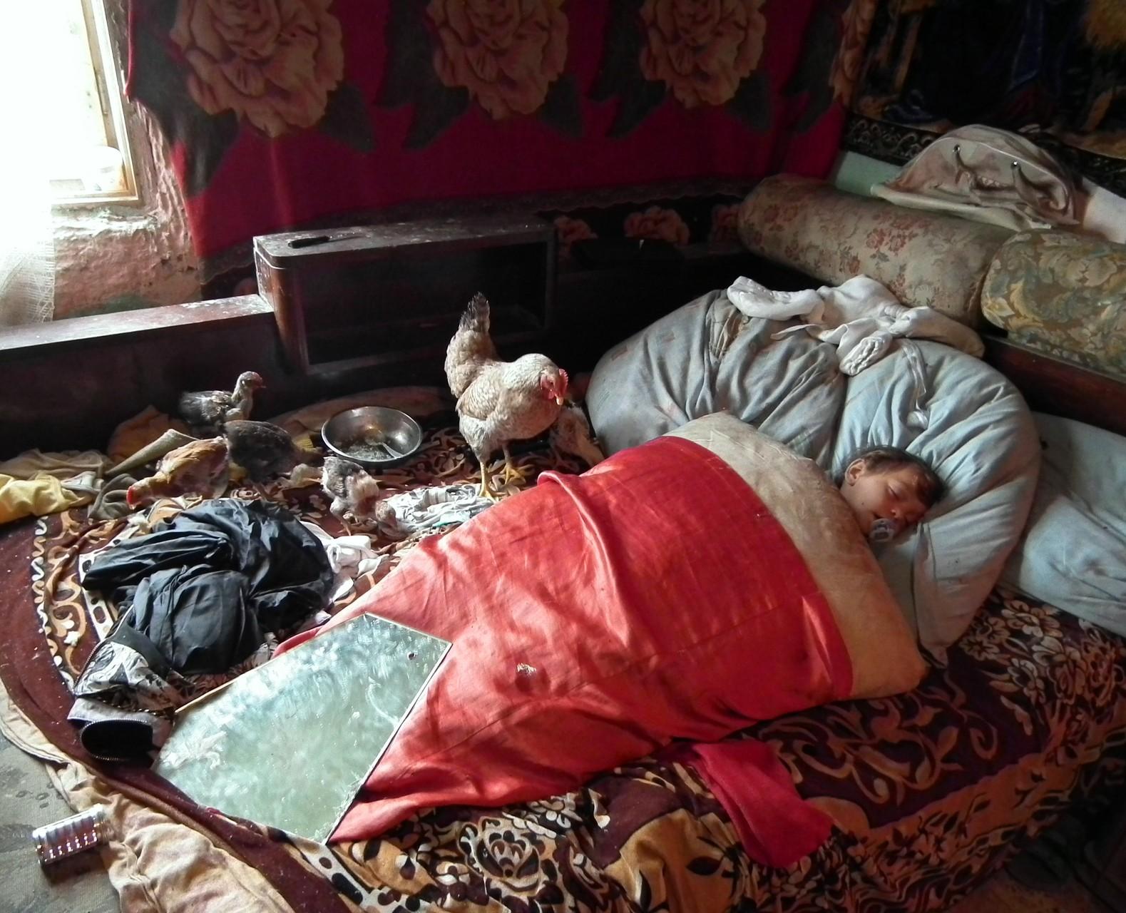 Sz.P.K plaket: Barcsa Sándor (Bályok-Bihar) - Jó reggelt !