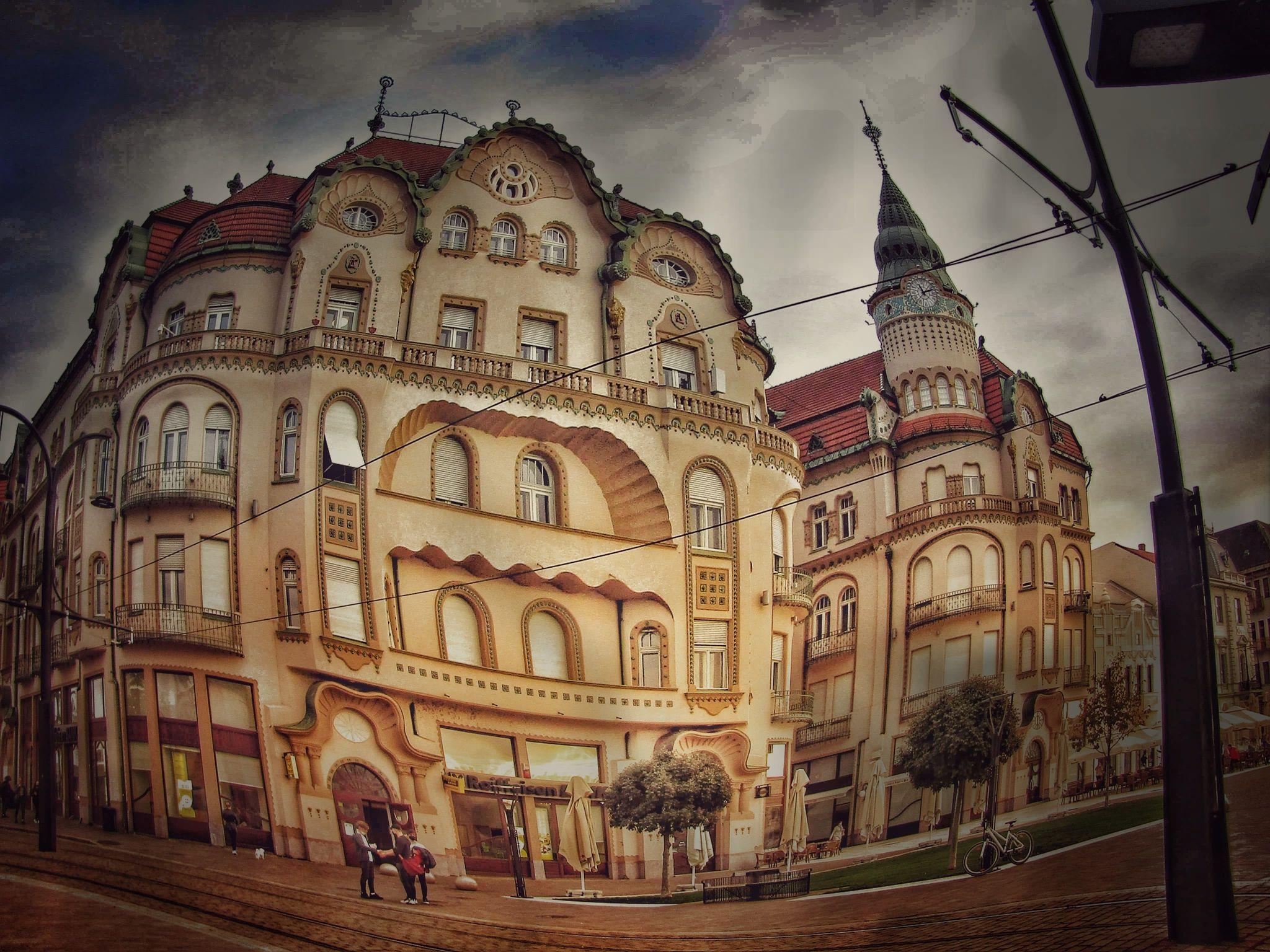 Szegedi Éva (RO)