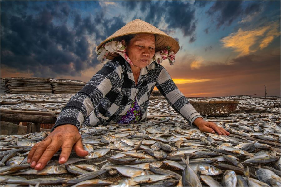 Grace Tan Lee Eng (Singapore) - Fisher woman Drying Fish