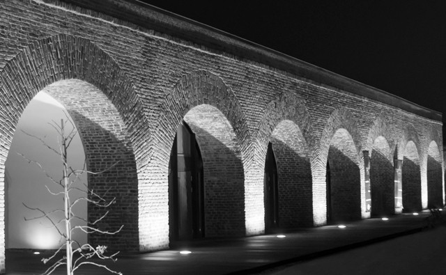 Munteanu Cosmina Daniela Vlasta (RO) - Ziduri istorice_Történelmi falak