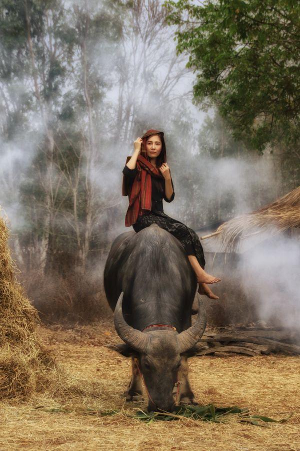 Pat Choo (Singapore) - Village Girl on Buffalo