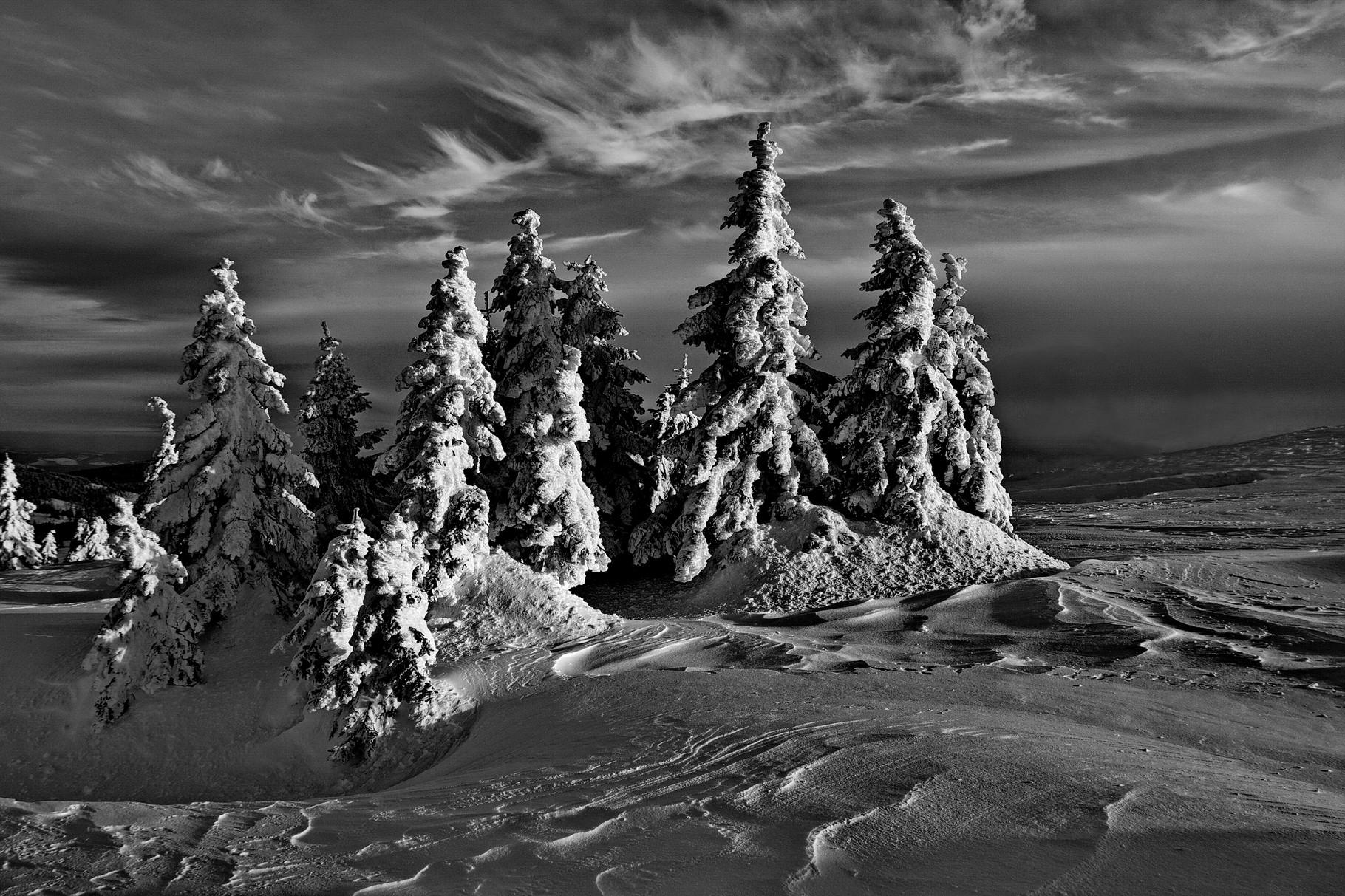 D-Bronz CPSzmedal - Zsolt András (RO) - Winter Dream/ Téli álom