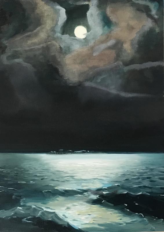 Pampus bij maanlicht