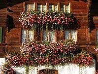 Eines der berühmten Simmentaler Häuser
