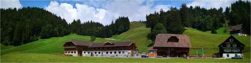 Wandern Schwyz Hochstuckli
