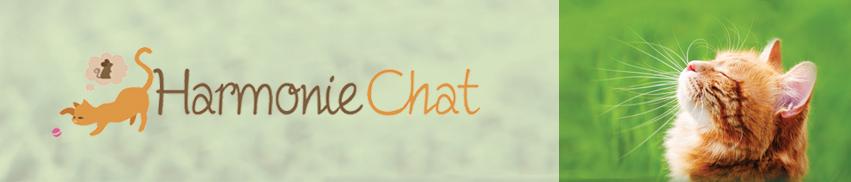 Visites à domicile pour la garde de votre chat : Bordeaux, Le Bouscat, Caudéran, Bègles, Bouliac, Floirac, Cenon, Lormont