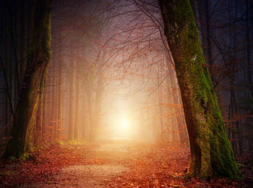 Der innere Weg der Mystiker