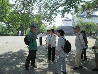 本丸広場巨松側(本丸御殿があった場所。一時動物園があったが、猿は引き取り手がいなかった。)