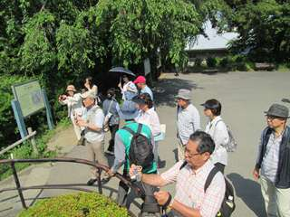 本丸東堀跡:花菖蒲咲く堀の跡を望む
